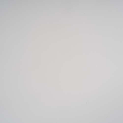 Wandflies - Verfilzt